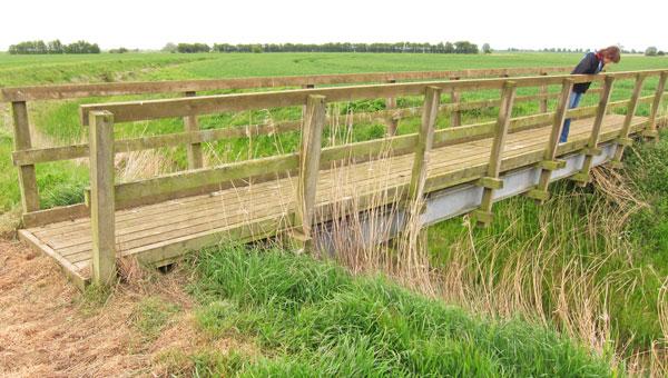 bridge_over_ditch