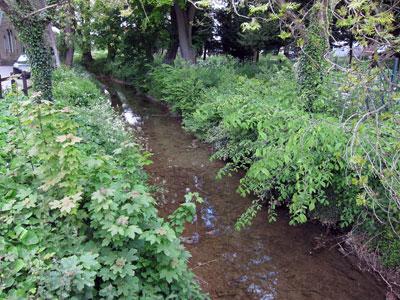 Creek-at-Alford-copy