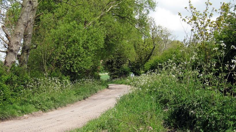 Marsh Lane Cumberworth Teesdale's farm copy